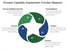 Process Capability Assessment Function Measure Control Asset Analyze Process