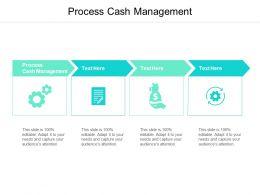 Process Cash Management Ppt Powerpoint Presentation Model Show Cpb