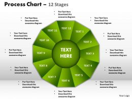 process chart 12 stages style 1 powerpoint slides and ppt templates 0412