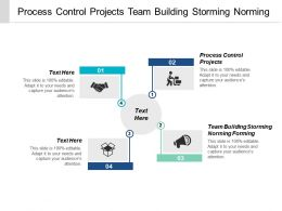 Process Control Projects Team Building Storming Norming Forming Cpb