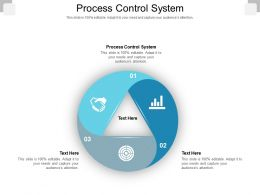 Process Control System Ppt Powerpoint Presentation Gallery Graphics Download Cpb