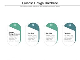 Process Design Database Ppt Powerpoint Presentation File Summary Cpb