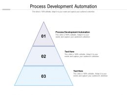 Process Development Automation Ppt Powerpoint Presentation Infographics Guide Cpb