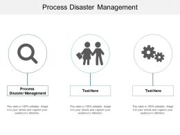 Process Disaster Management Ppt Powerpoint Presentation Show Styles Cpb
