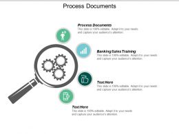 Process Documents Ppt Powerpoint Presentation Icon Example File Cpb