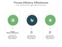Process Efficiency Effectiveness Ppt Powerpoint Presentation Gallery Rules Cpb
