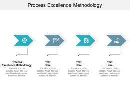Process Excellence Methodology Ppt Powerpoint Presentation Outline Files Cpb
