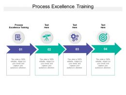 Process Excellence Training Ppt Powerpoint Presentation Summary Pictures Cpb