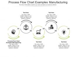 Process Flow Chart Examples Manufacturing Ppt Powerpoint Presentation Icon Good Cpb