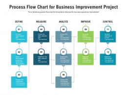 Process Flow Chart For Business Improvement Project