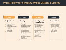 Process Flow For Company Online Database Security Ppt Gallery