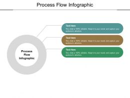 Process Flow Infographic Ppt Powerpoint Presentation Example 2015 Cpb