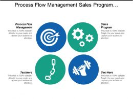 Process Flow Management Sales Program Leadership Qualities