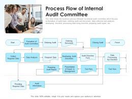 Process Flow Of Internal Audit Committee
