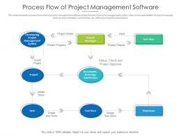 Process Flow Of Project Management Software