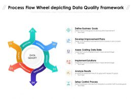 Process Flow Wheel Depicting Data Quality Framework