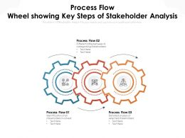 Process Flow Wheel Showing Key Steps Of Stakeholder Analysis
