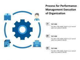 Process For Performance Management Execution Of Organization