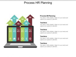 Process HR Planning Ppt Powerpoint Presentation File Structure Cpb