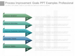 Process Improvement Goals Ppt Examples Professional