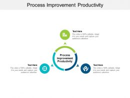 Process Improvement Productivity Ppt Powerpoint Presentation Show Graphic Tips Cpb