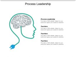 Process Leadership Ppt Powerpoint Presentation File Visual Aids Cpb
