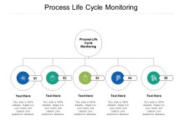 Process Life Cycle Monitoring Ppt Powerpoint Presentation File Gallery Cpb