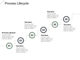 Process Lifecycle Ppt Powerpoint Presentation File Designs Cpb