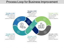 Process Loop For Business Improvement Ppt Images