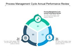Process Management Cycle Annual Performance Review Ppt Powerpoint Presentation Gallery Deck Cpb