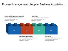 Process Management Lifecycle Business Acquisition Process Mapping Tool Cpb