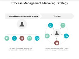 Process Management Marketing Strategy Ppt Powerpoint Presentation Styles Slide Cpb