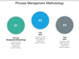 Process Management Methodology Ppt Powerpoint Presentation File Background Designs Cpb