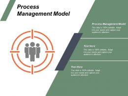 Process Management Model Ppt Powerpoint Presentation File Guide Cpb