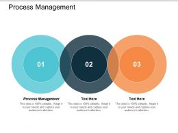 Process Management Ppt Powerpoint Presentation Styles Themes Cpb