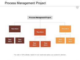 Process Management Project Ppt Powerpoint Presentation Layouts Slide Download Cpb