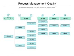 Process Management Quality Ppt Powerpoint Presentation Inspiration Professional Cpb