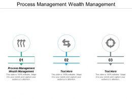 Process Management Wealth Management Ppt Powerpoint Presentation Professional Visuals Cpb
