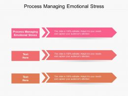 Process Managing Emotional Stress Ppt Powerpoint Presentation Show Styles Cpb