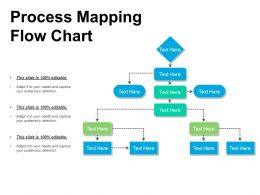 Process Mapping Flow Chart Presentation Design