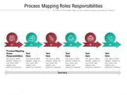 Process Mapping Roles Responsibilities Ppt Powerpoint Presentation Portfolio Cpb