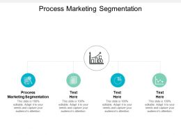 Process Marketing Segmentation Ppt Powerpoint Presentation Portfolio Clipart Images Cpb
