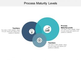 Process Maturity Levels Ppt Powerpoint Presentation Professional Graphic Tips Cpb