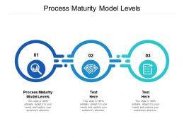 Process Maturity Model Levels Ppt Powerpoint Presentation Professional Introduction Cpb