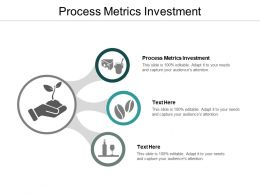 Process Metrics Investment Ppt Powerpoint Presentation Professional Gridlines Cpb