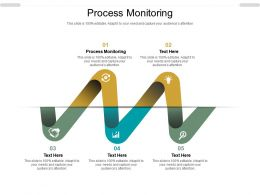 Process Monitoring Ppt Powerpoint Presentation File Outline Cpb