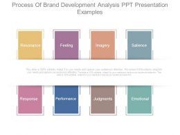 Process Of Brand Development Analysis Ppt Presentation Examples