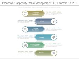 Process Of Capability Value Management Ppt Example Of Ppt