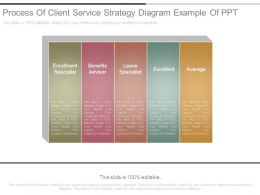 Process Of Client Service Strategy Diagram Example Of Ppt