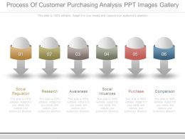 Process Of Customer Purchasing Analysis Ppt Images Gallery